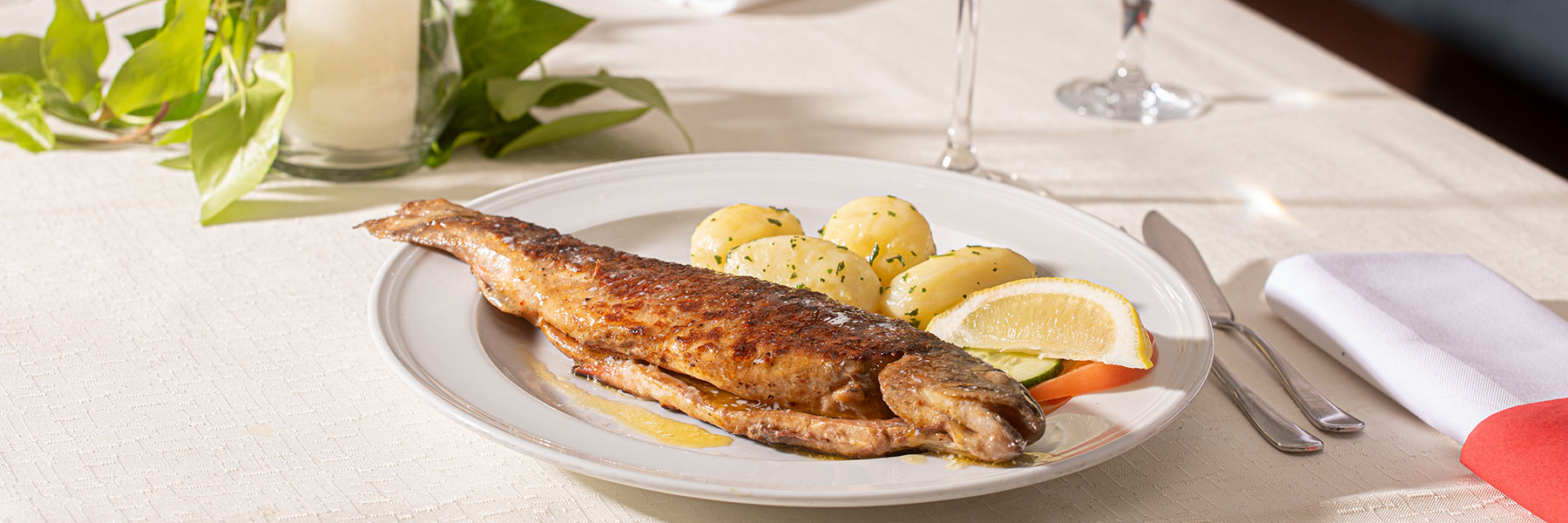 Gebratener Fisch mit Petersilienkartoffeln im Gasthof Alter Weißbräu in Bad Birnbach